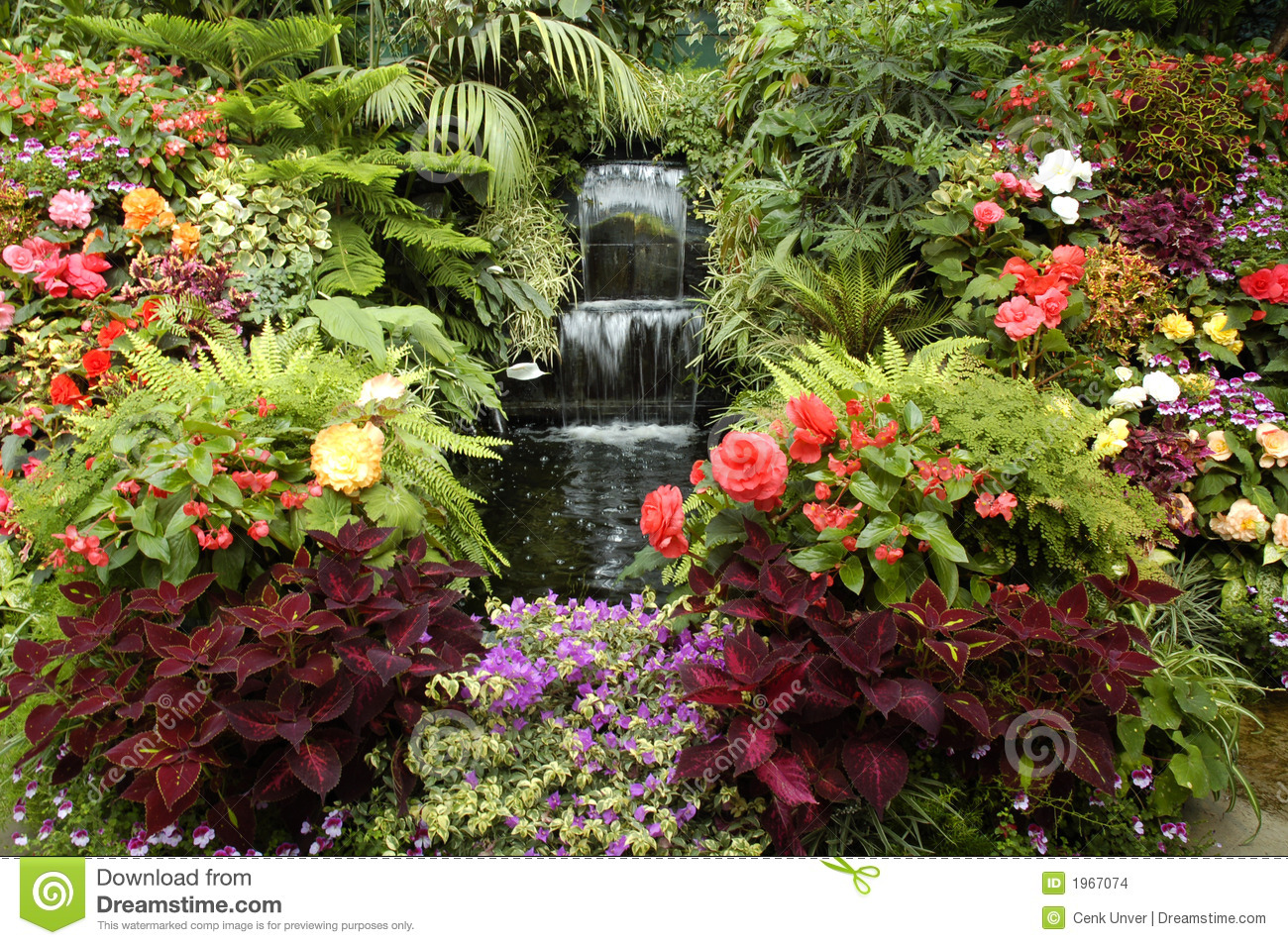 The garden of eden stock photo image of landscapes for Cancion en el jardin del eden