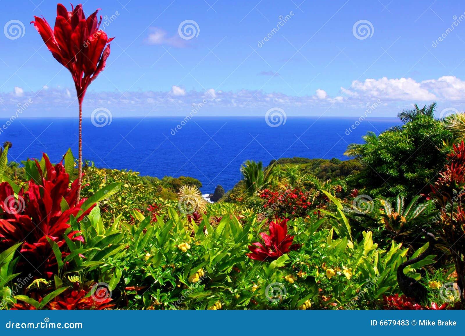 Garden Of Eden, Maui Hawaii