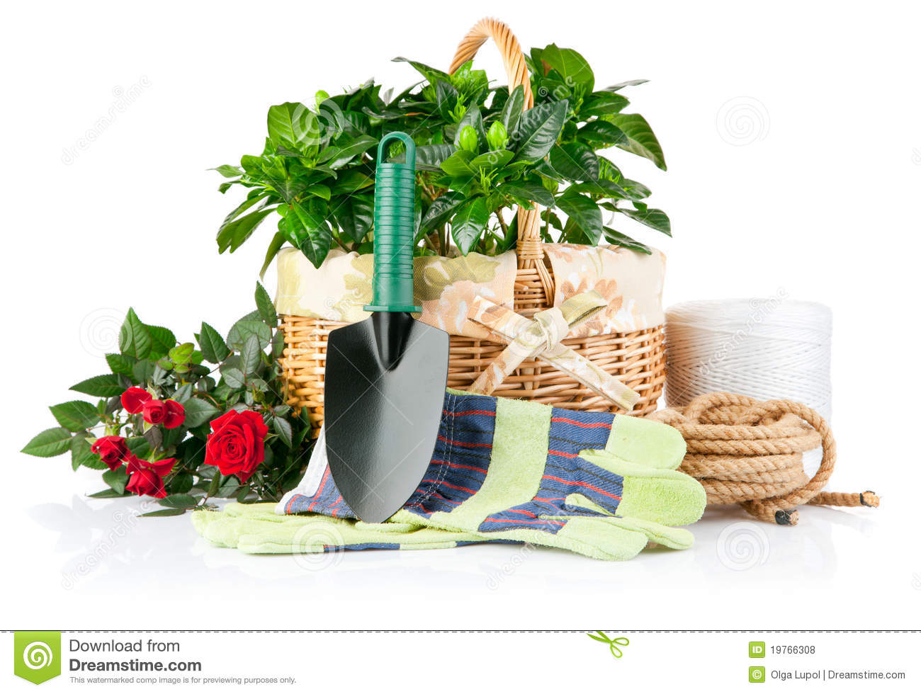 Garden Equipment With Flowers And Green Plants Stock Photo ...