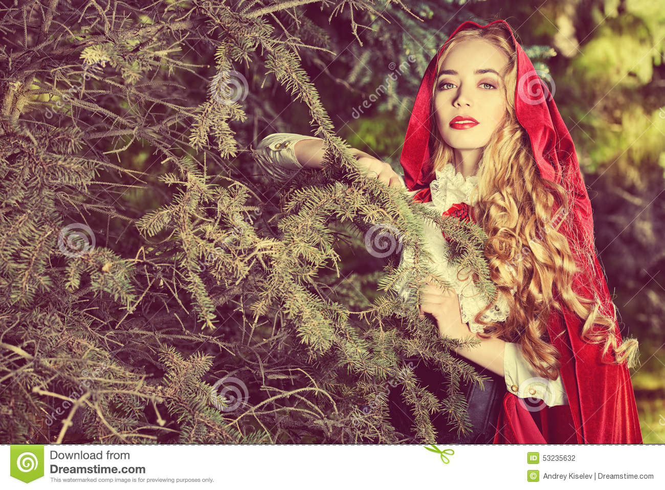 Garden fairytale stock photo. Image of countryside, glamour - 53235632