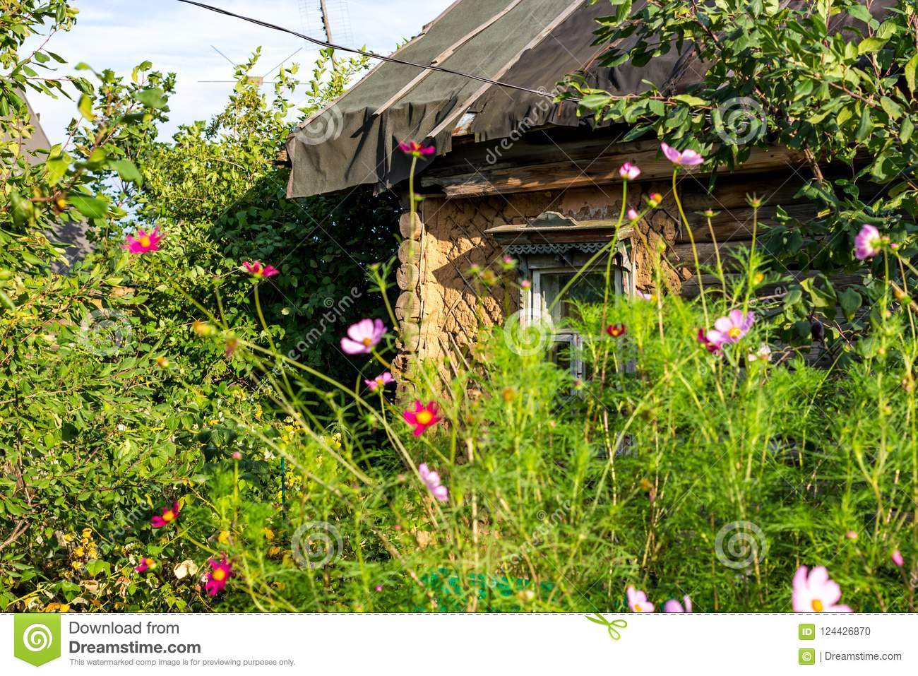 Garden Flowers On The Background Of A Very Old Village House