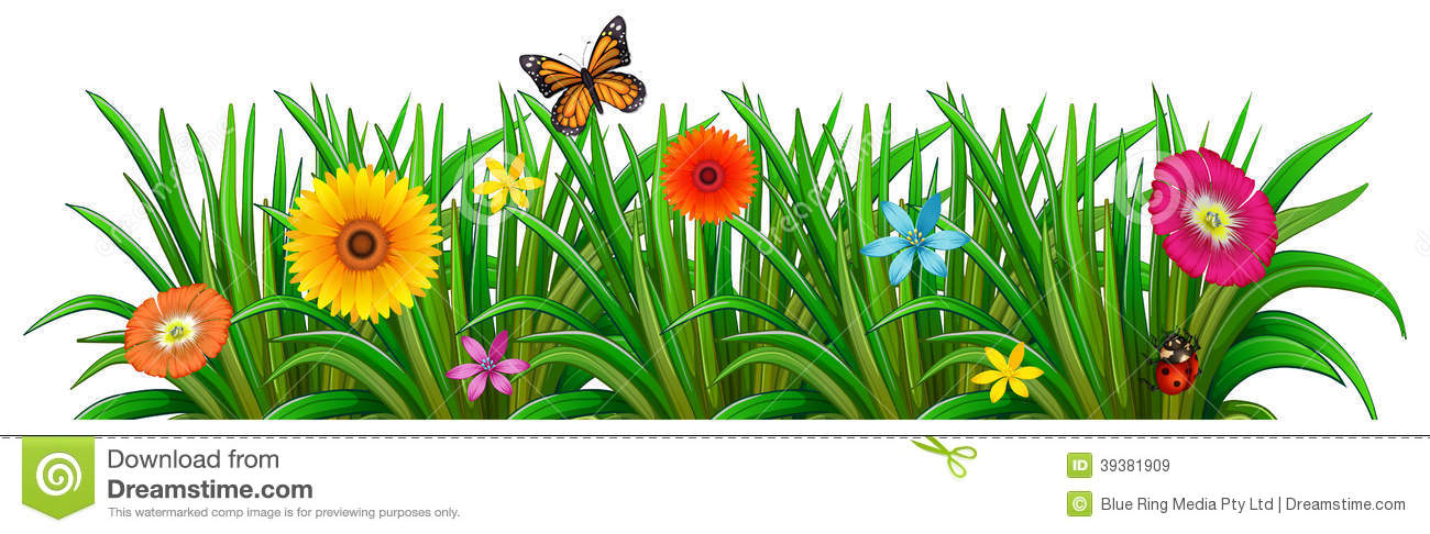 A Garden With Fresh Blooming Flowers Butterfly And Ladybug
