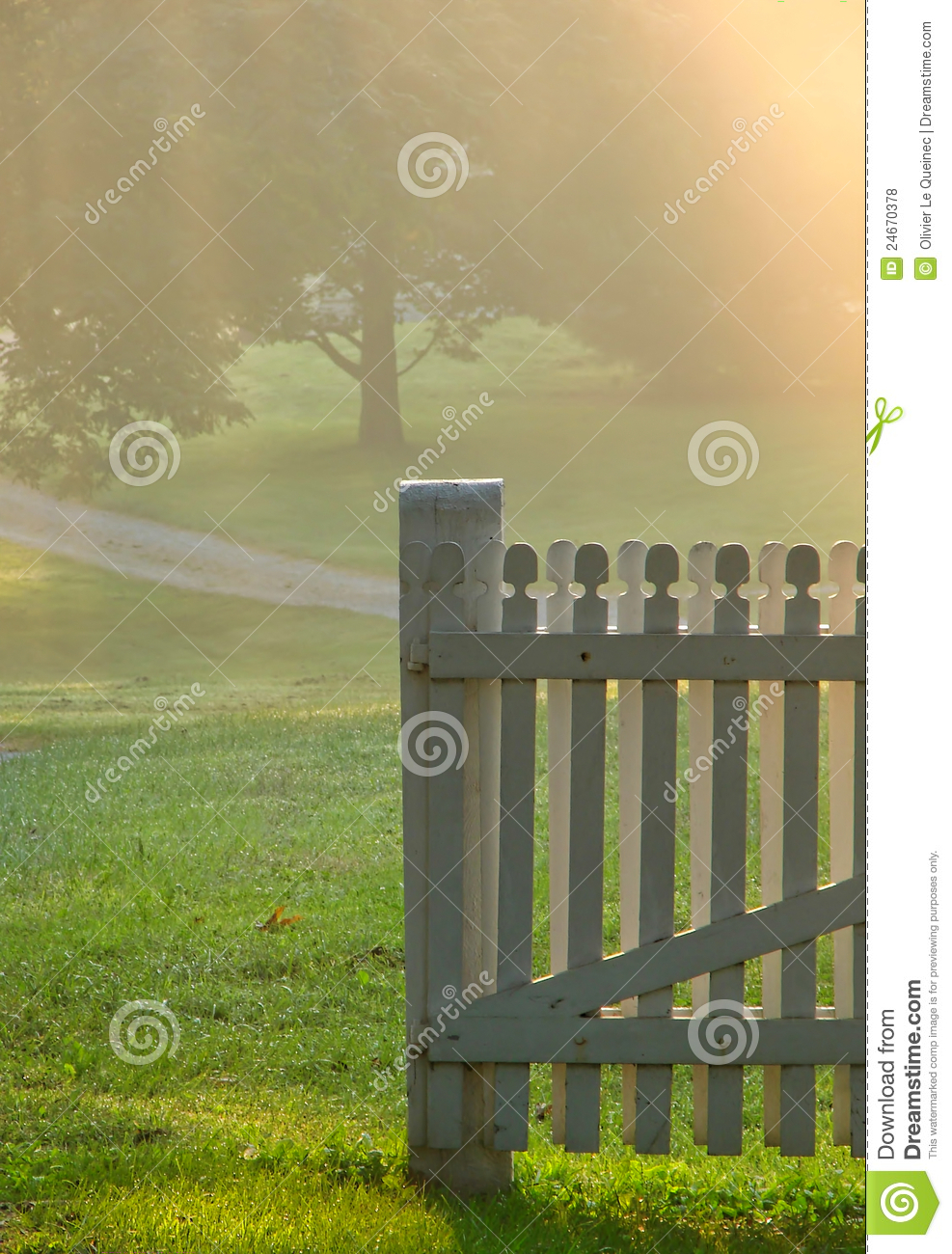 Garden Gate in Morning Fog over Country Meadow
