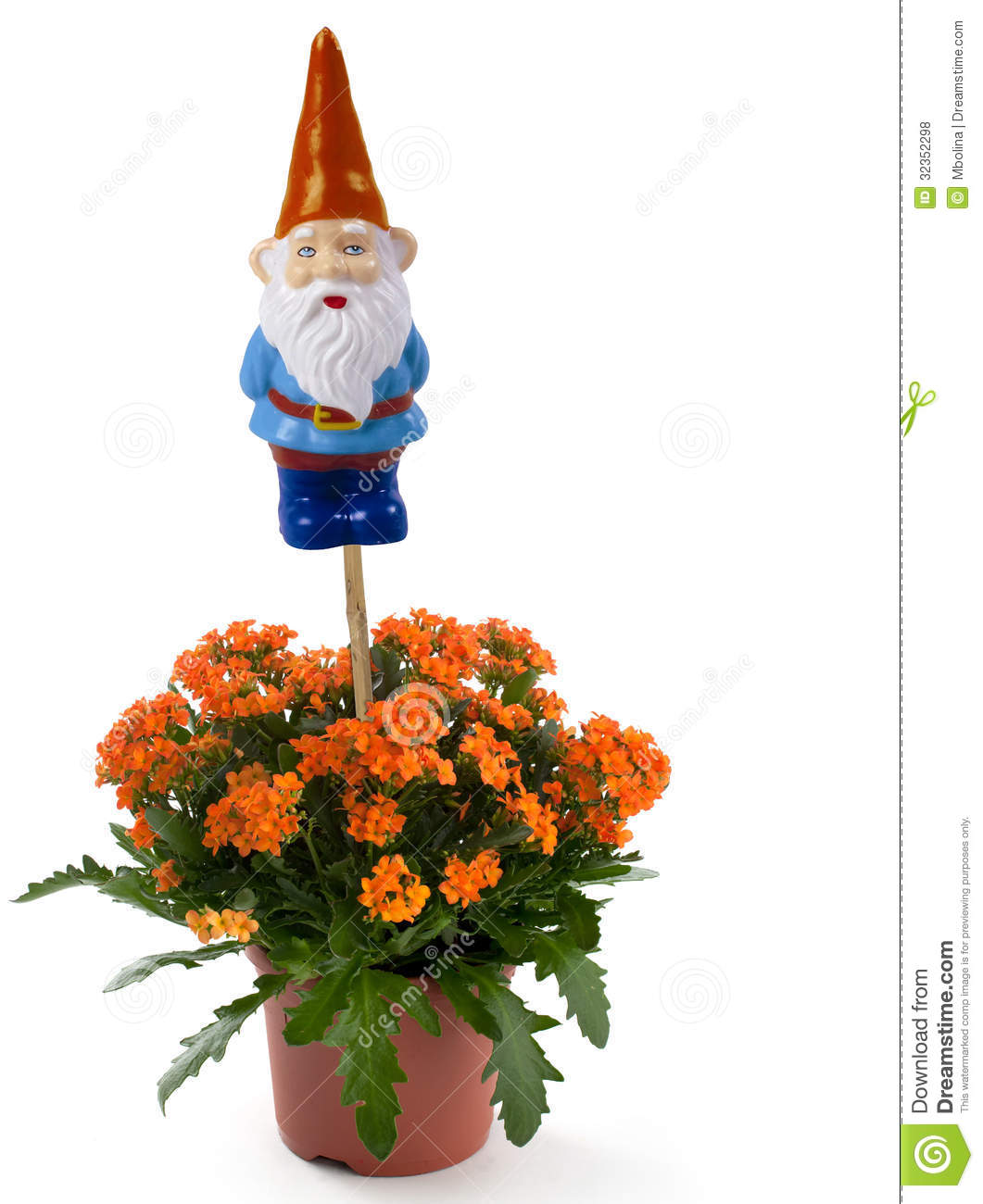 Garden Gnome With Flowers Stock Photo Image Of