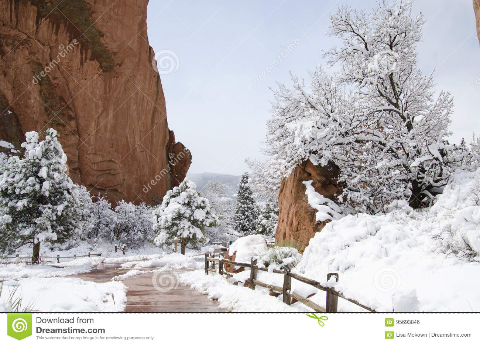 Garden Of The Gods Park In Winter Stock Photo Image Of