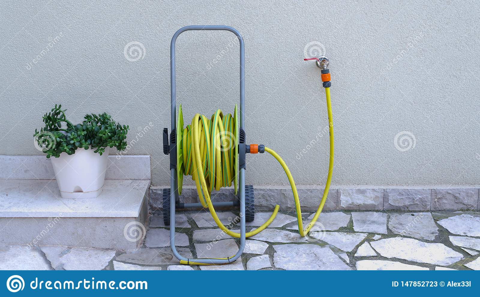 Garden hose for irrigation near the house wall
