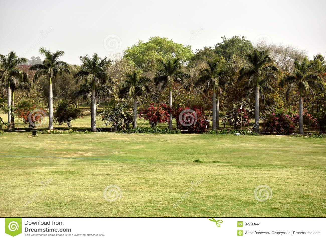 Garden in India stock image. Image of place, palms, ghat - 92790441