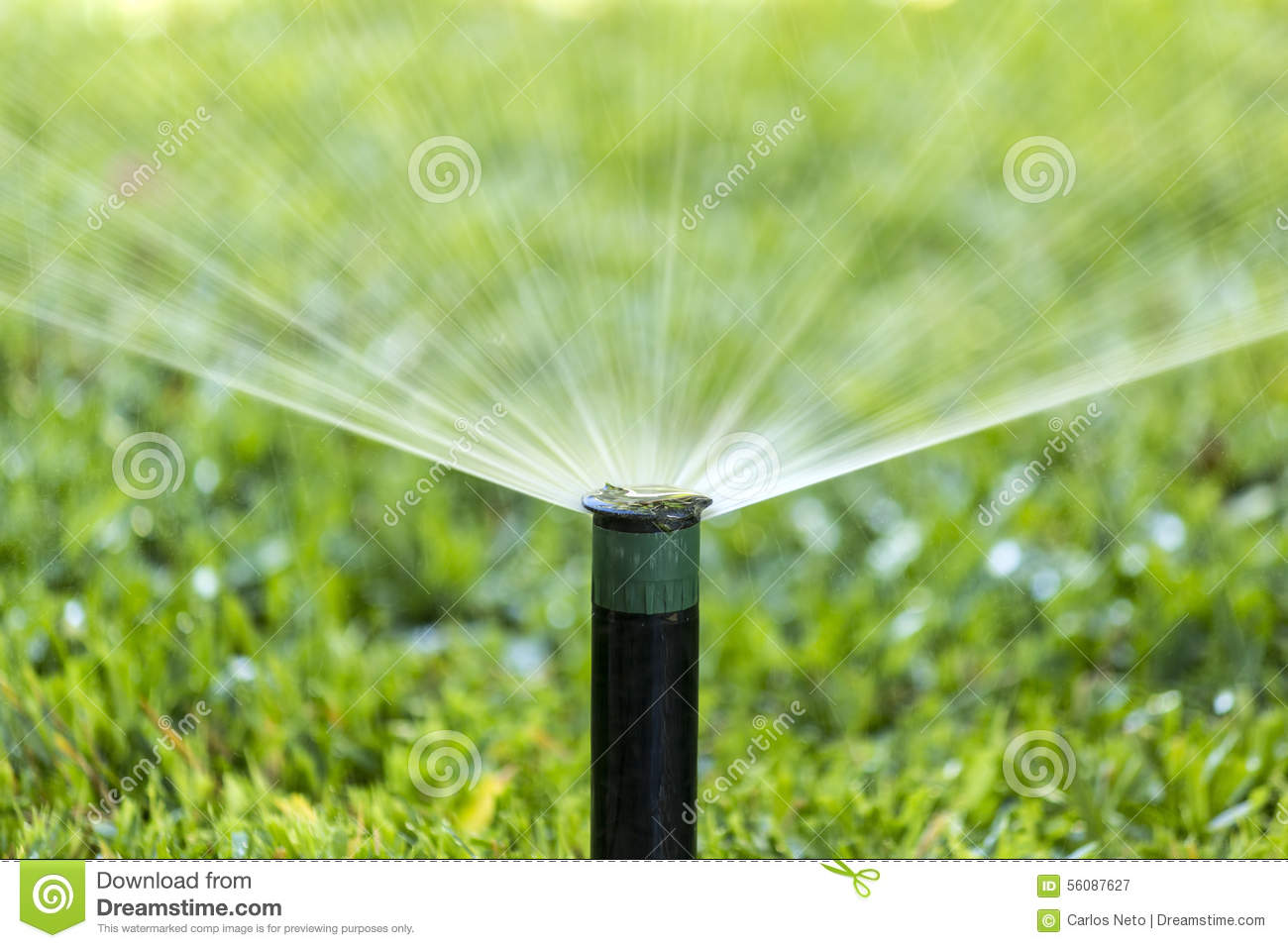 Garden Irrigation System Spray Watering Lawn Stock Photo Image