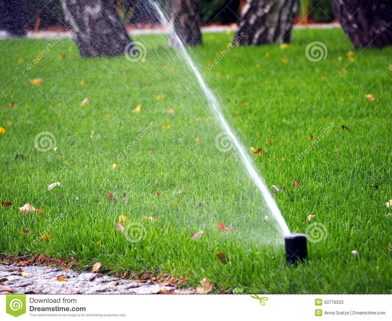 Sprinkler Automatic Working In The Garden Royalty-Free ...
