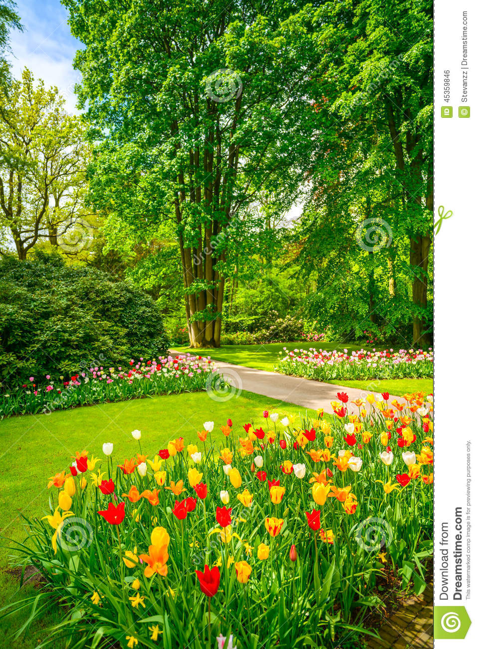 Garden in keukenhof tulip flowers and trees netherlands for Flowers and gardens pictures