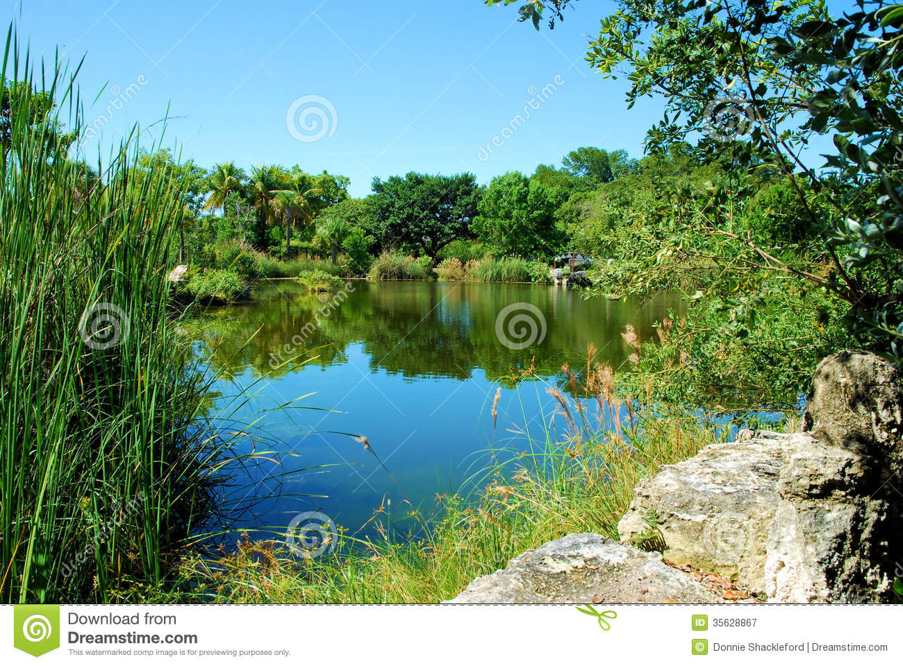 Garden Lake Royalty Free Stock Photography Image 35628867
