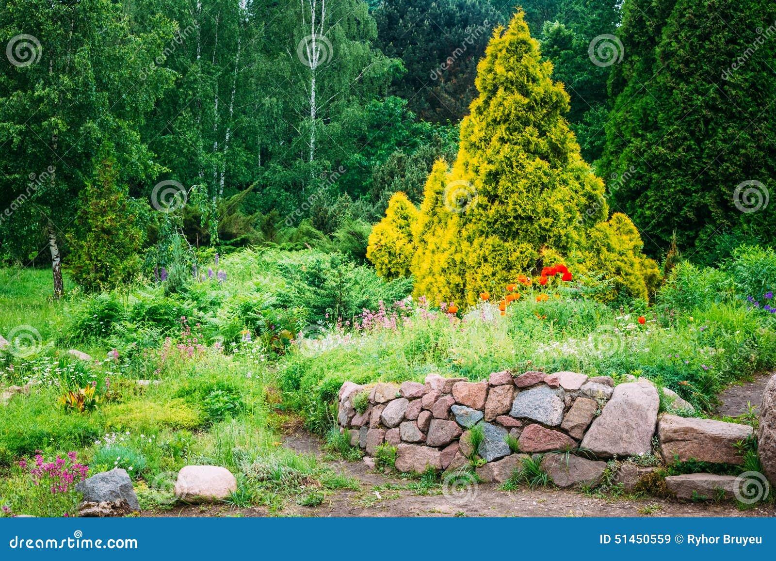 Garden landscaping design flower bed green trees stock for Short bushes for landscaping