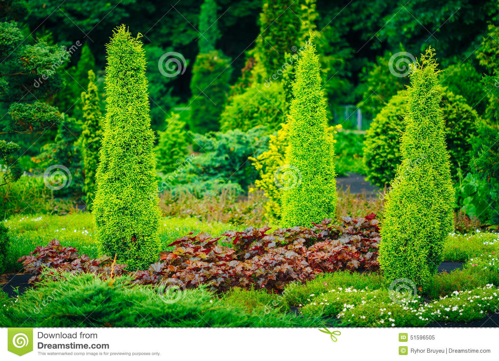 Garden landscaping design flower bed green trees stock for Small trees for flower beds