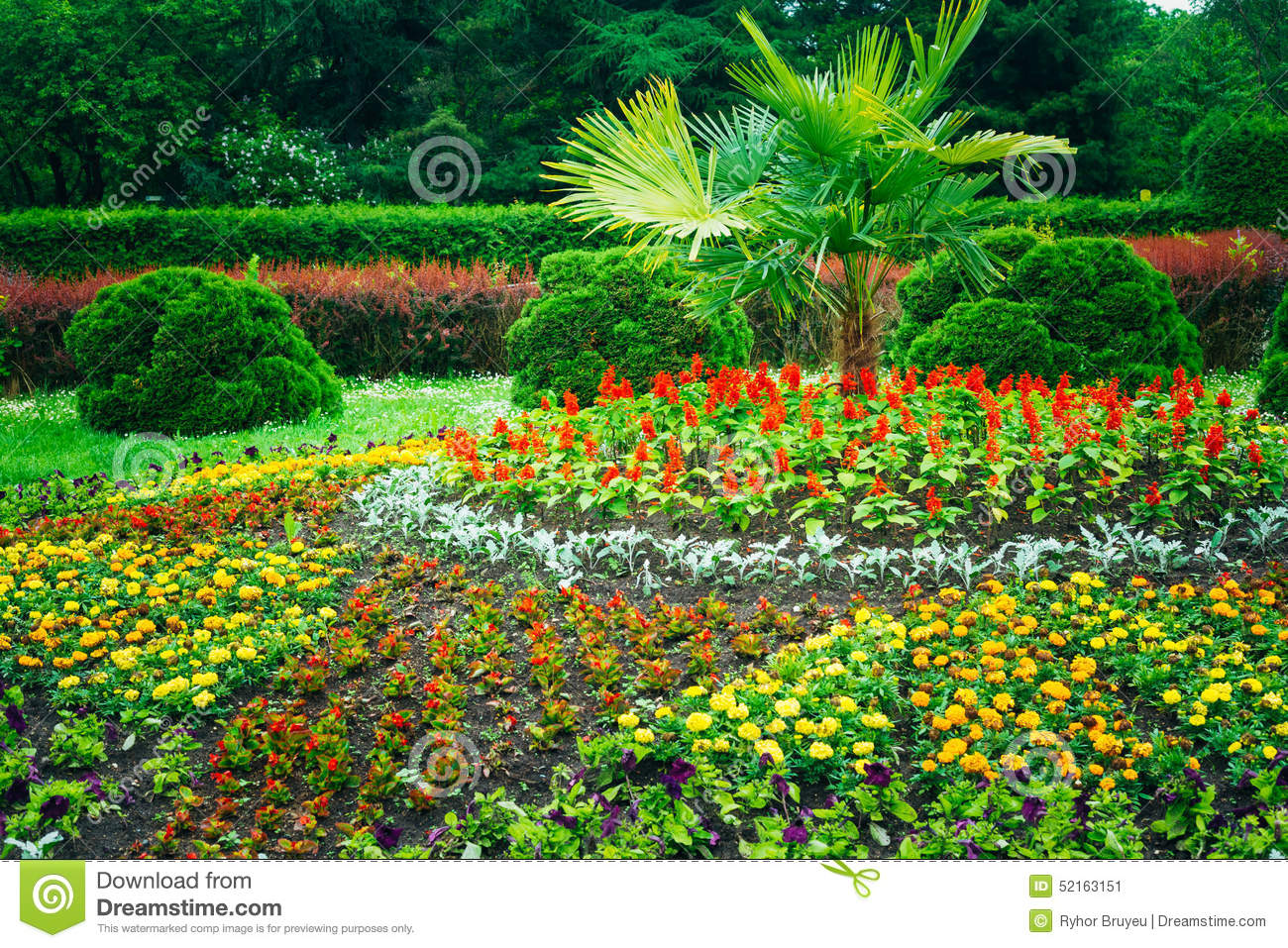 Garden landscaping design flower bed green trees stock for Green landscape design