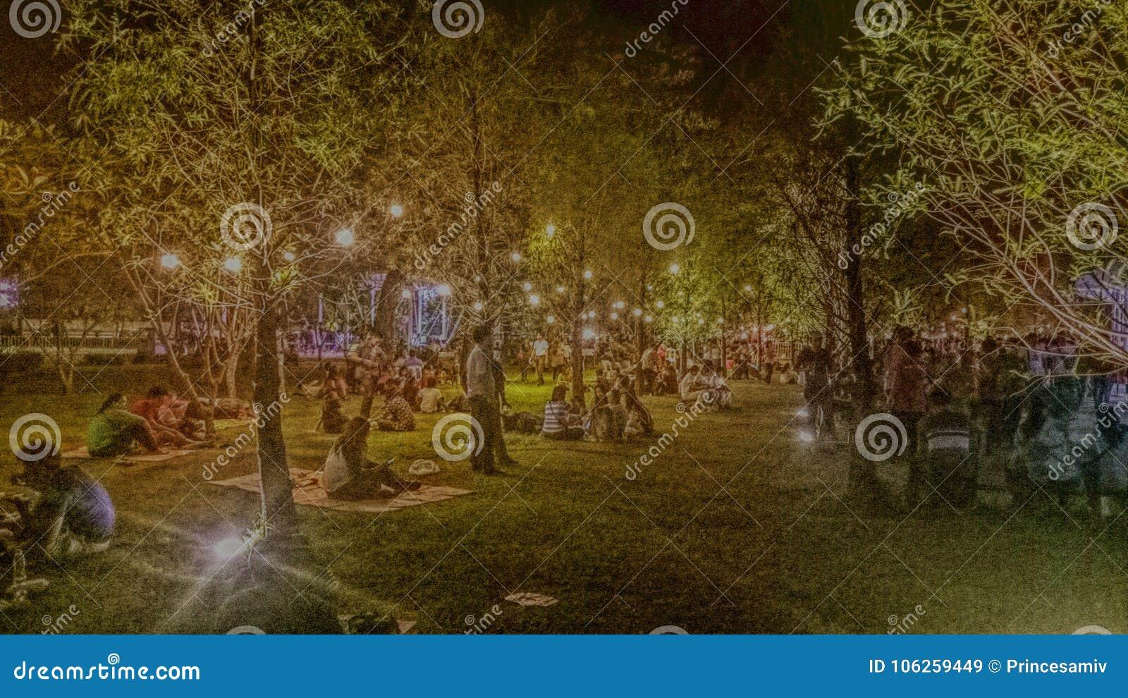 Garden lights at night editorial stock image. Image of garden ...