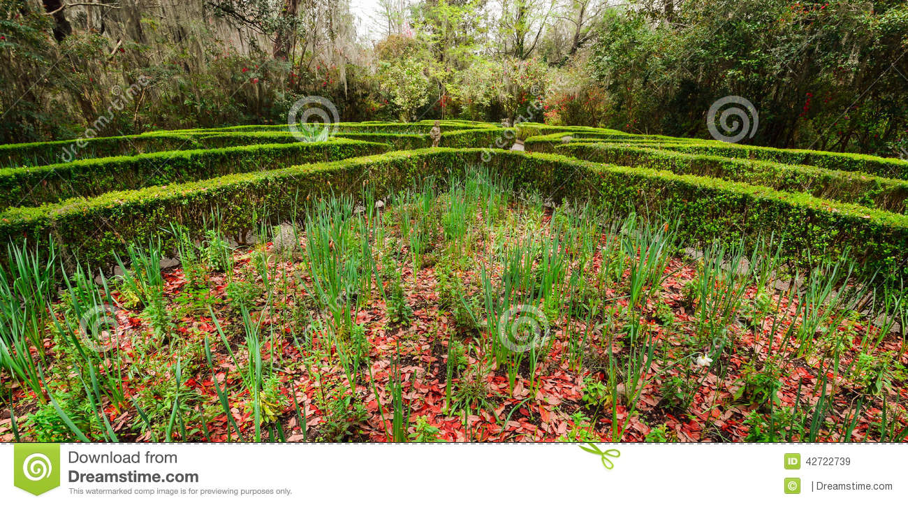 Garden Maze Stock Photo Image 42722739