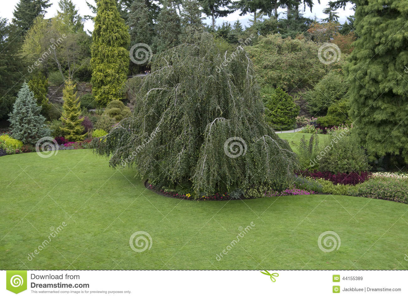 Garden Stock Photo Image 44155389