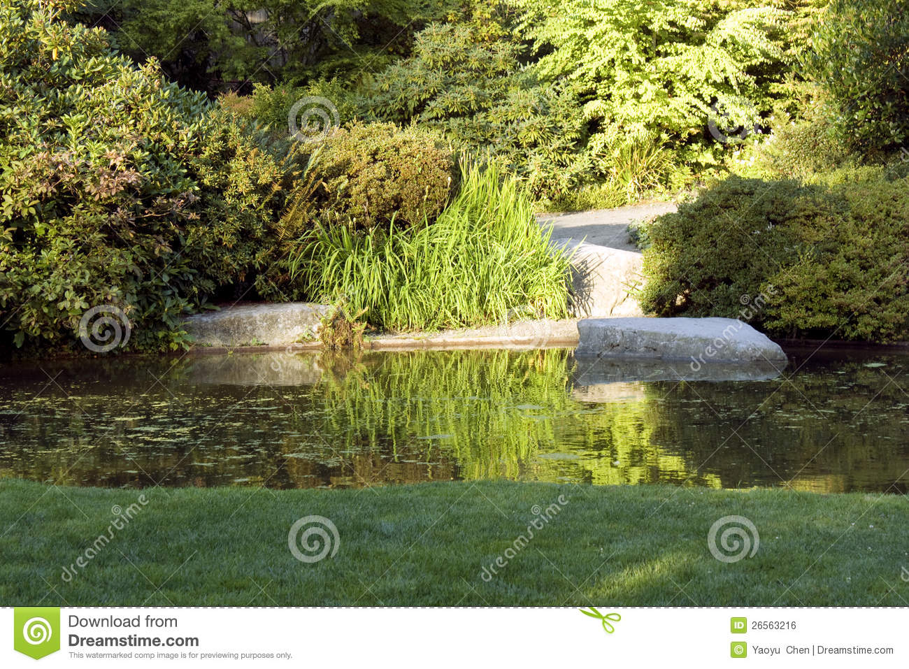 Garden with nice lawn and pond stock photo image of for Garden pond design software free download