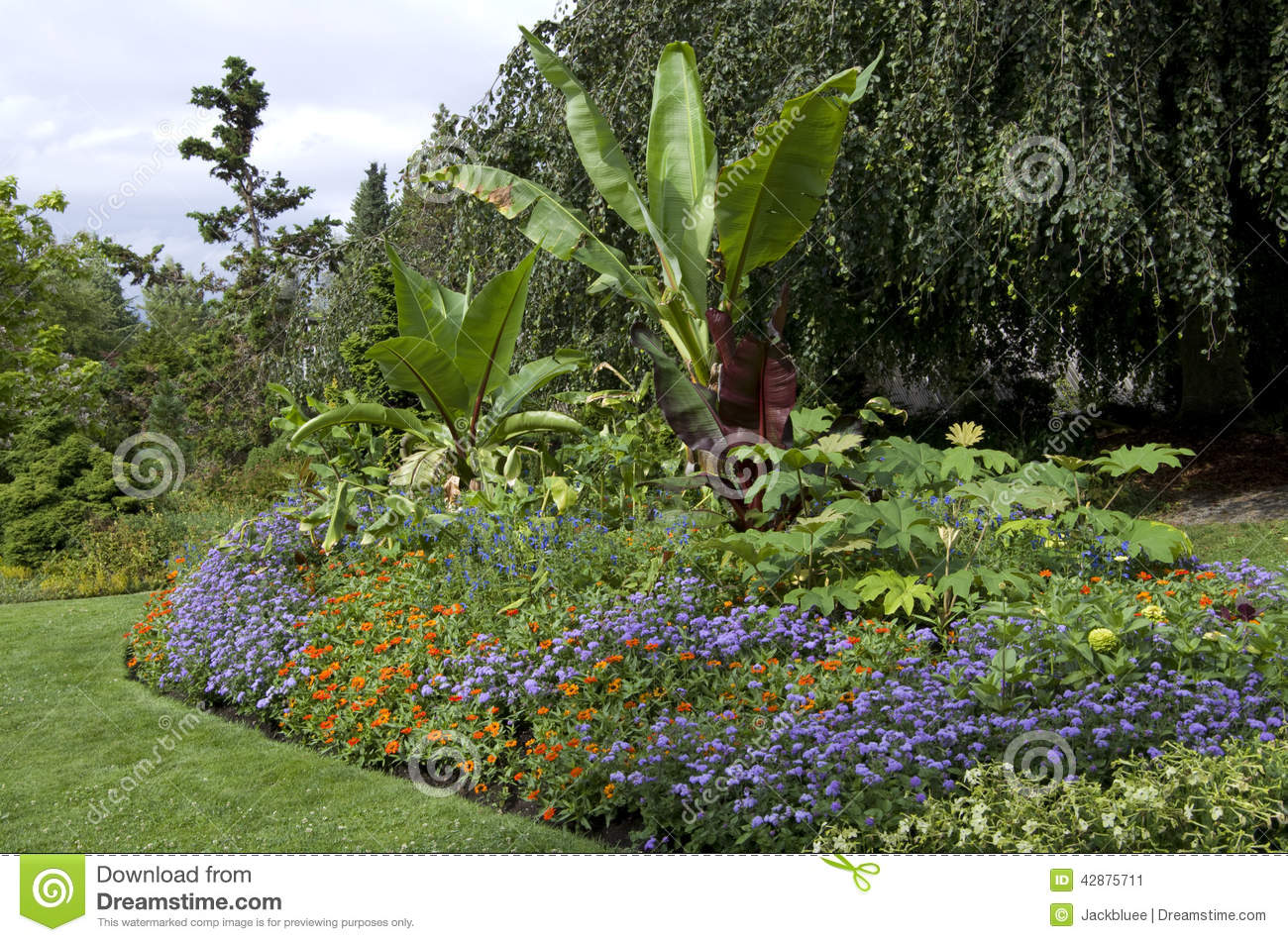 Garden Stock Photo Image 42875711