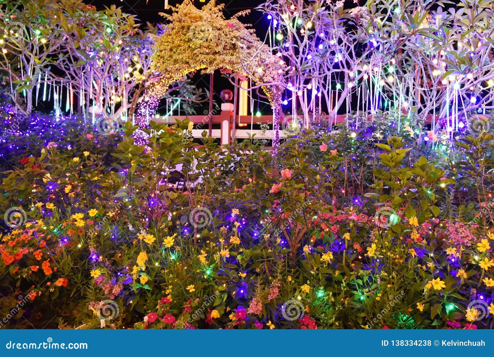 Garden Night Stock Photo Image Of Sunken Attraction 138334238