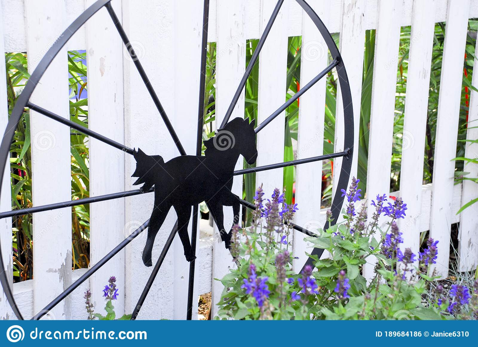 Black Rod Iron Wagon Wheel With A Horse In The Center Stock Photo Image Of Flower Fence 189684186