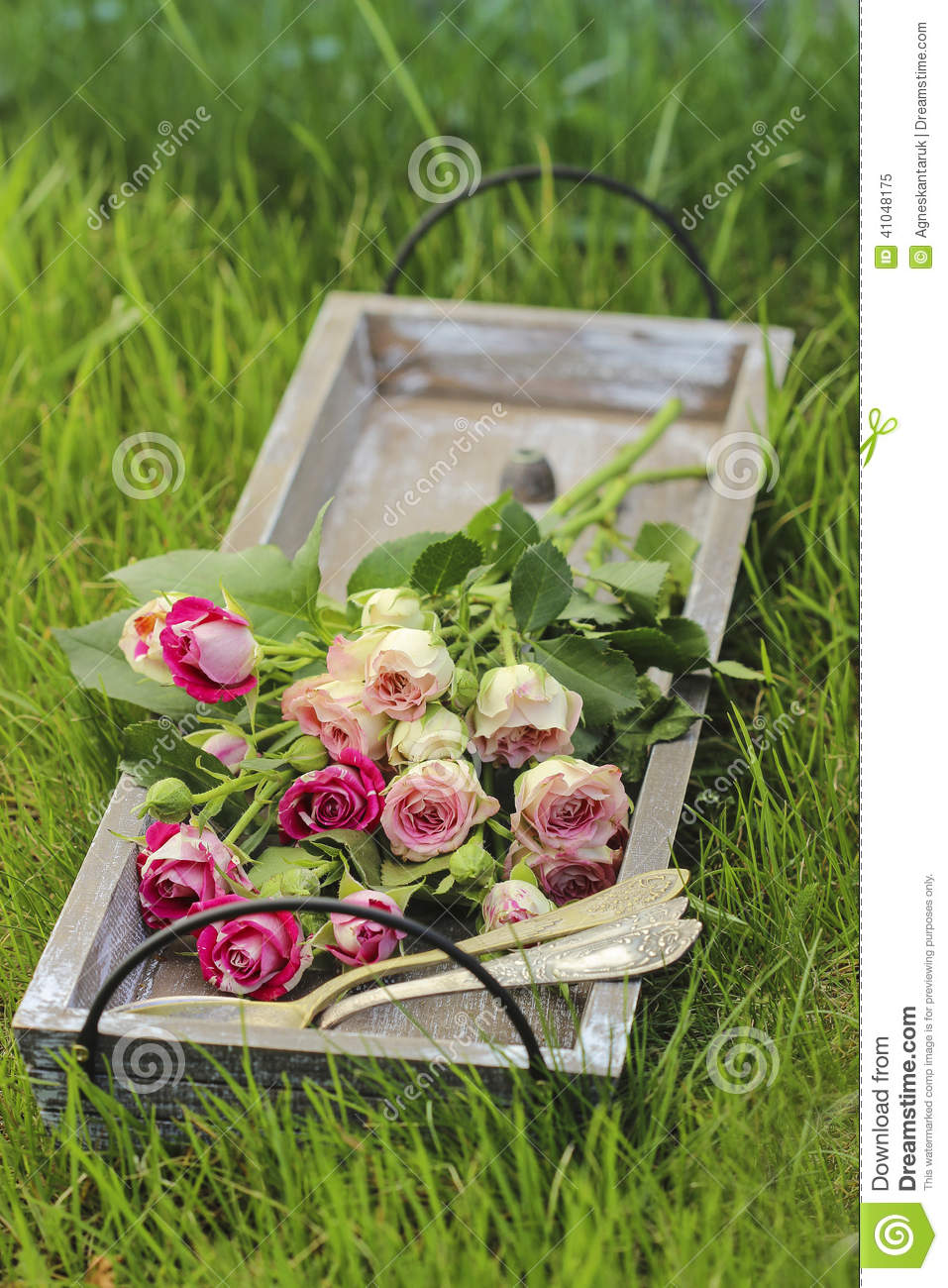Garden Party Decor. Bouquet Of Pink Roses Stock Image - Image of ...