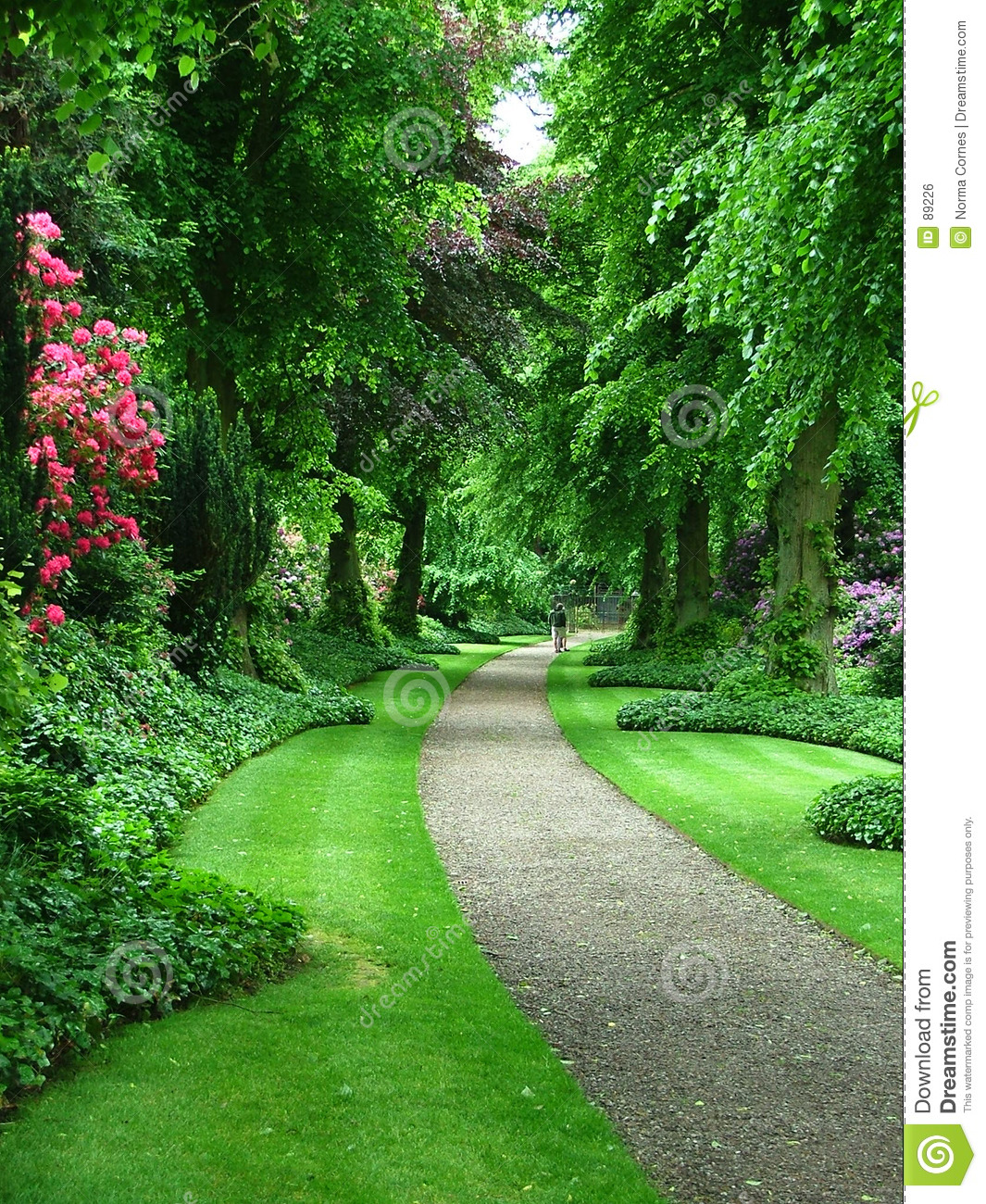 Garden Path Royalty Free Stock Image - Image: 89226