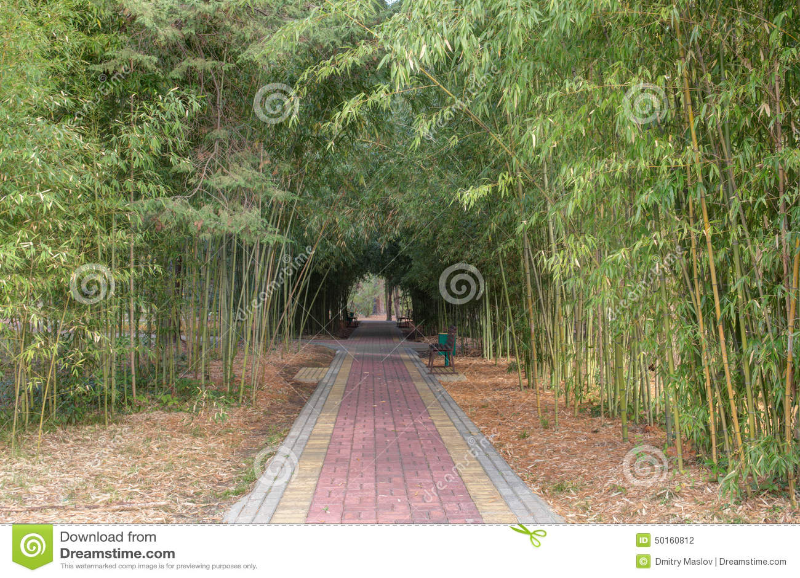 Garden Path Stock Photo Image 50160812