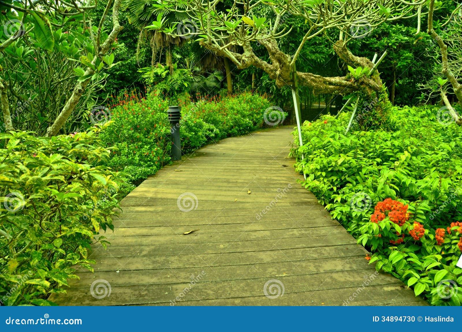 garden path singapore botanic gardens stock photo image 34894730. Black Bedroom Furniture Sets. Home Design Ideas