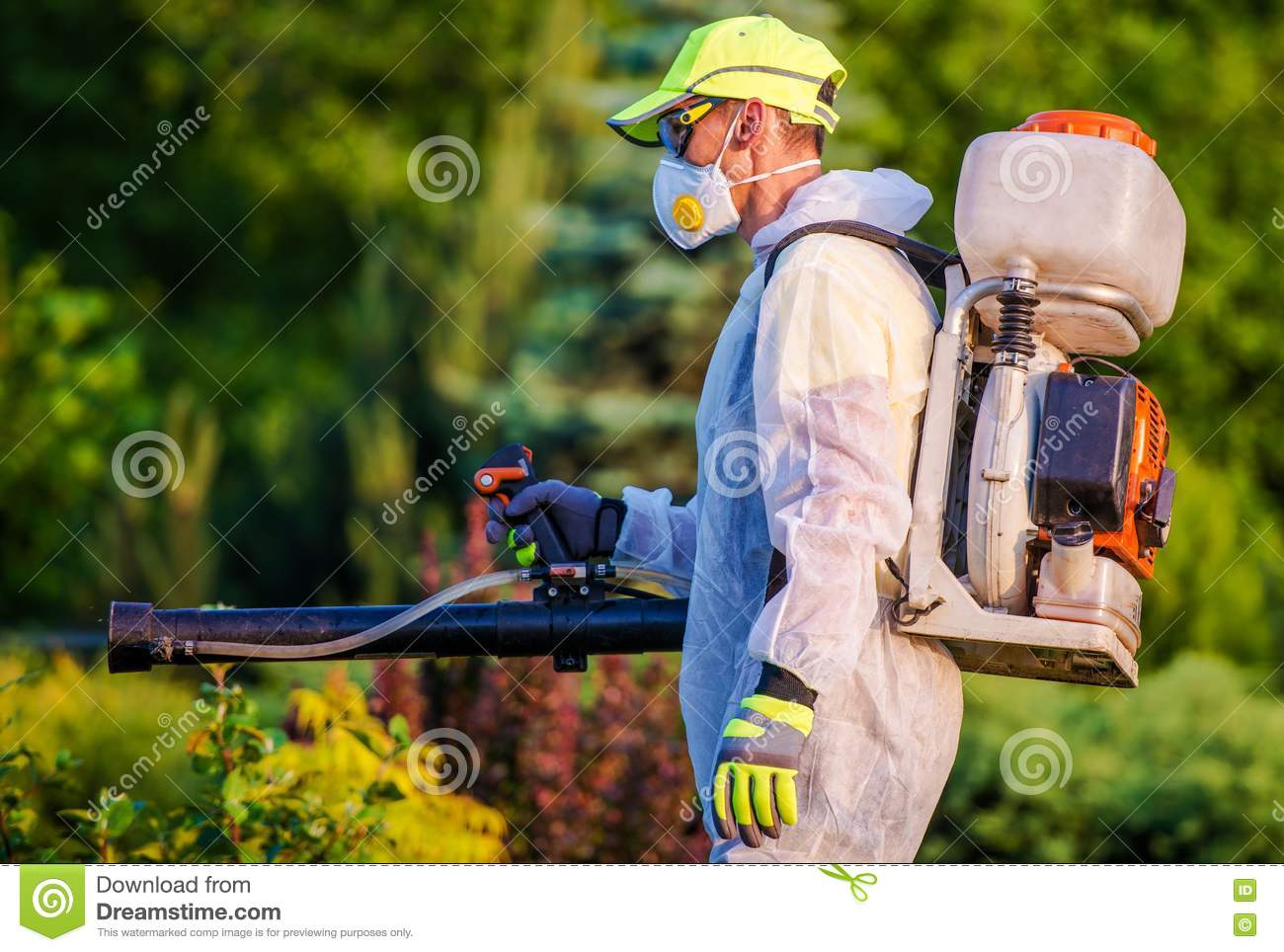 Garden Pest Control Service Stock Image - Image of ...