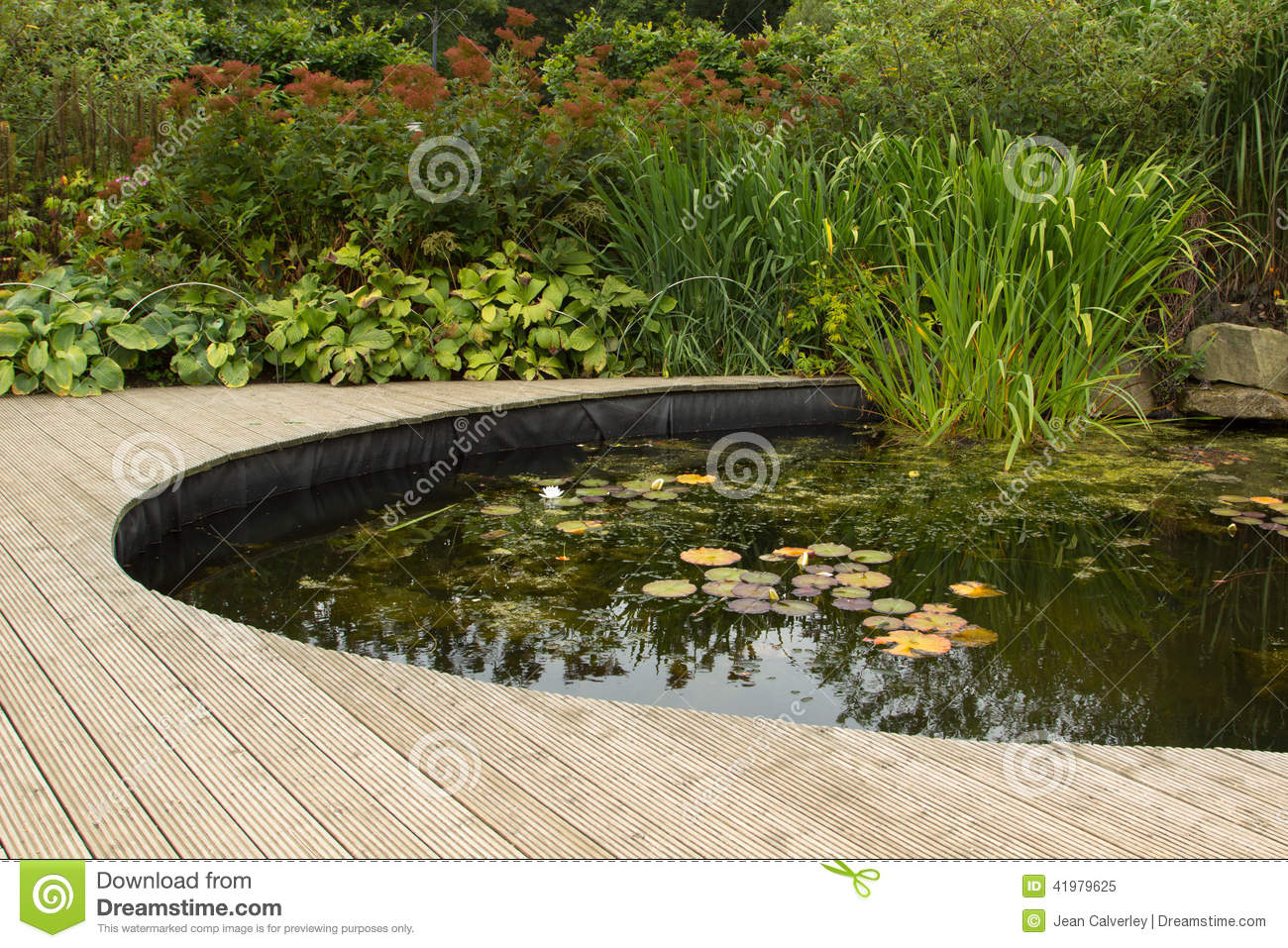 Garden pond with decking stock photo image 41979625 for Koi pond deck