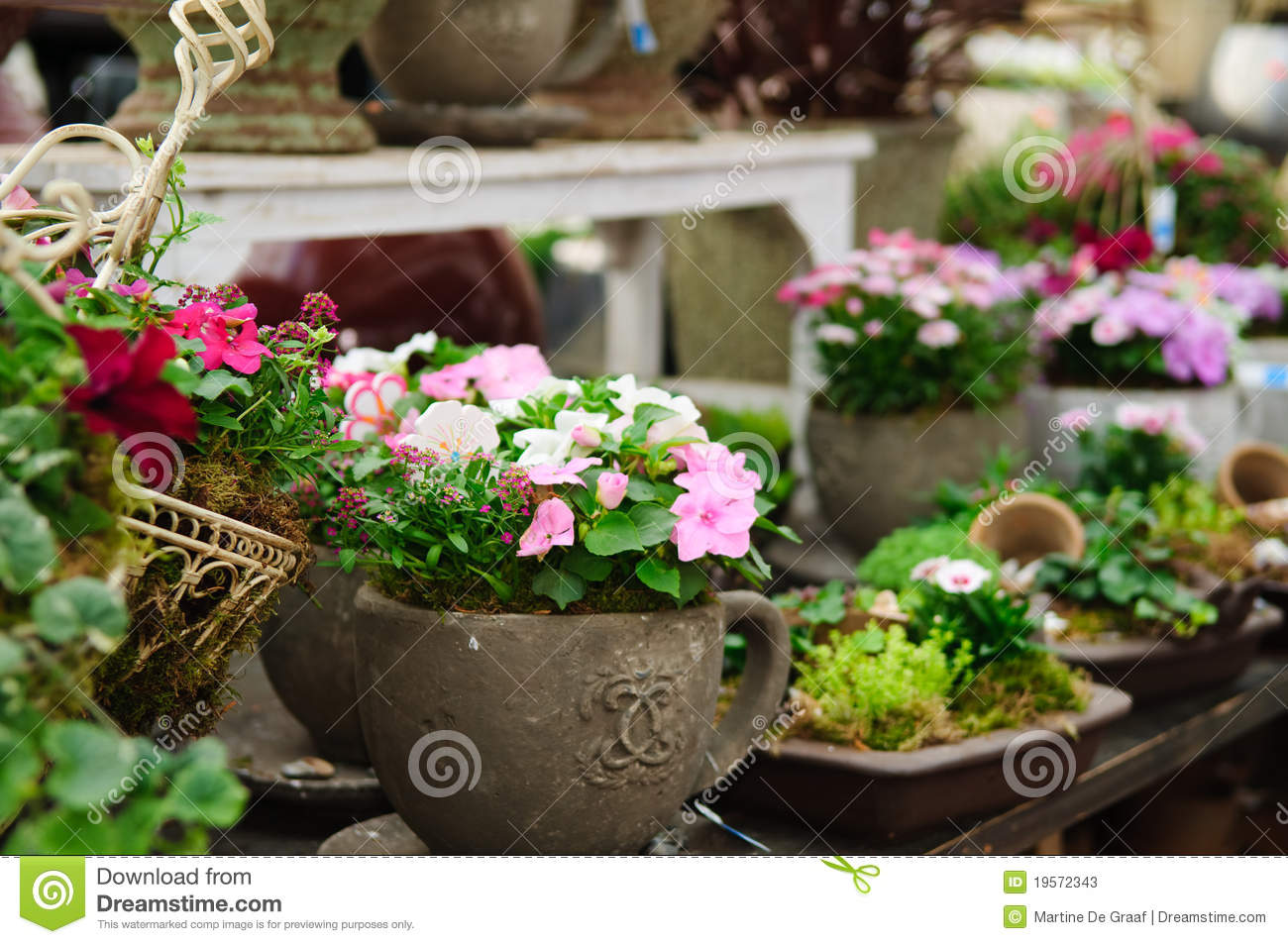 Garden Shop Stock Photos Image 19572343