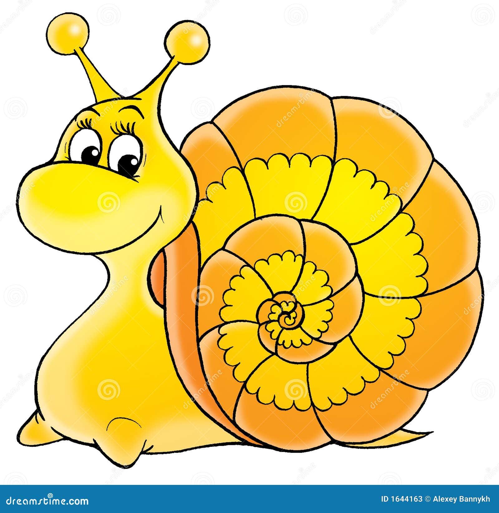 Garden Snail Stock Photos Image 1644163