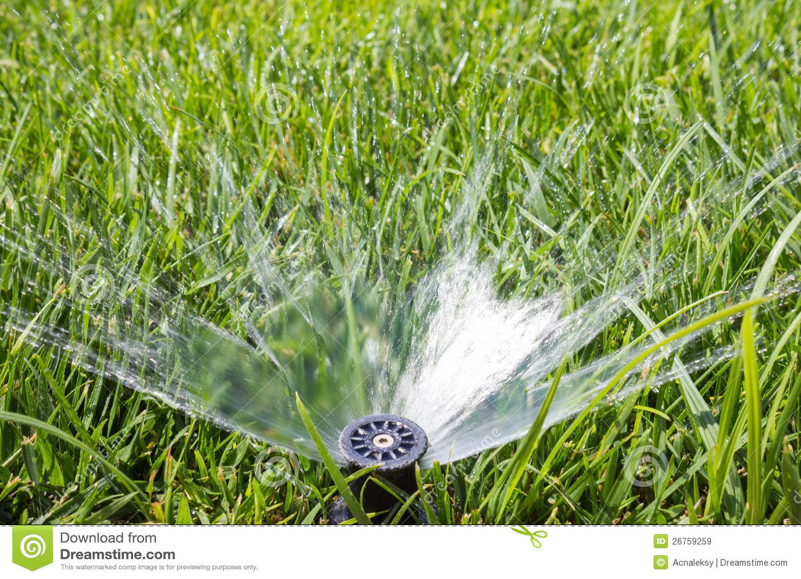 Garden Sprinkler Royalty Free Stock Images Image 26759259