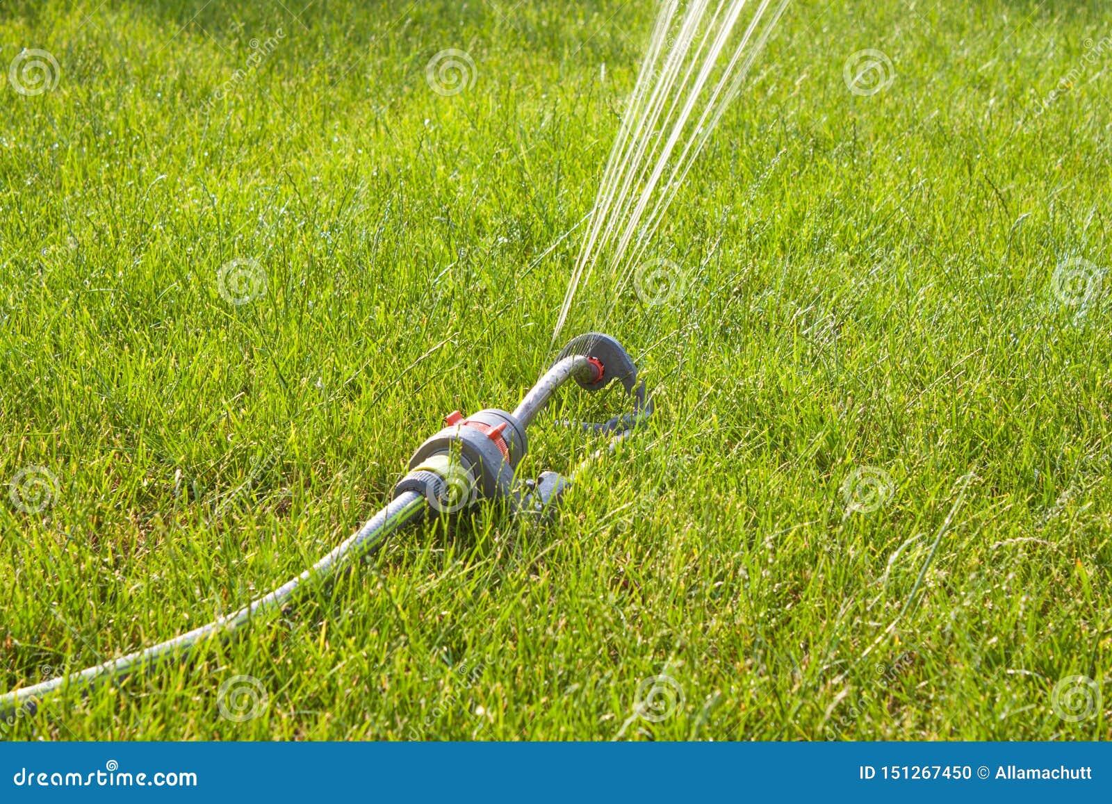 Garden sprinkler on sunny day