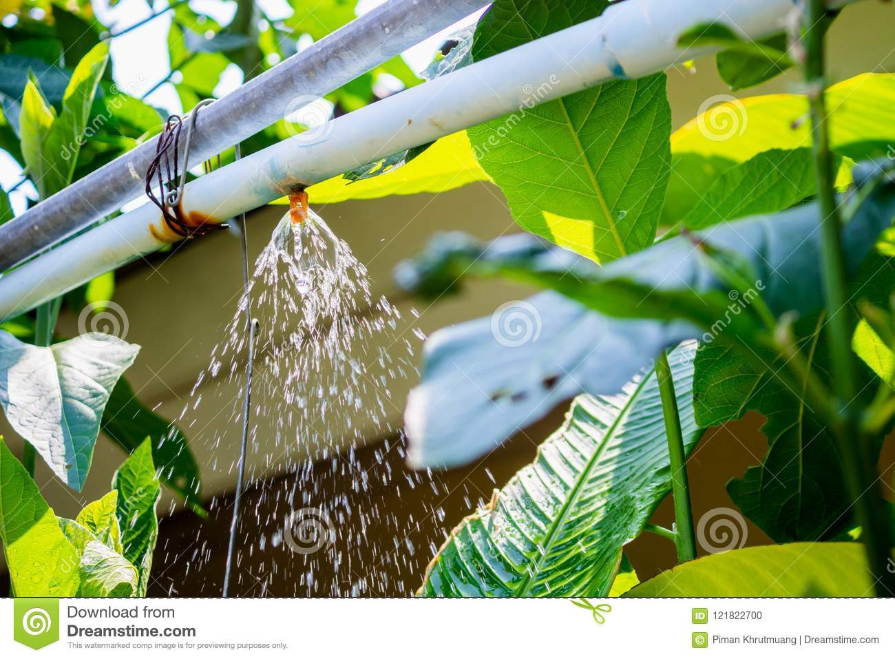 Garden sprinkler water irrigation system