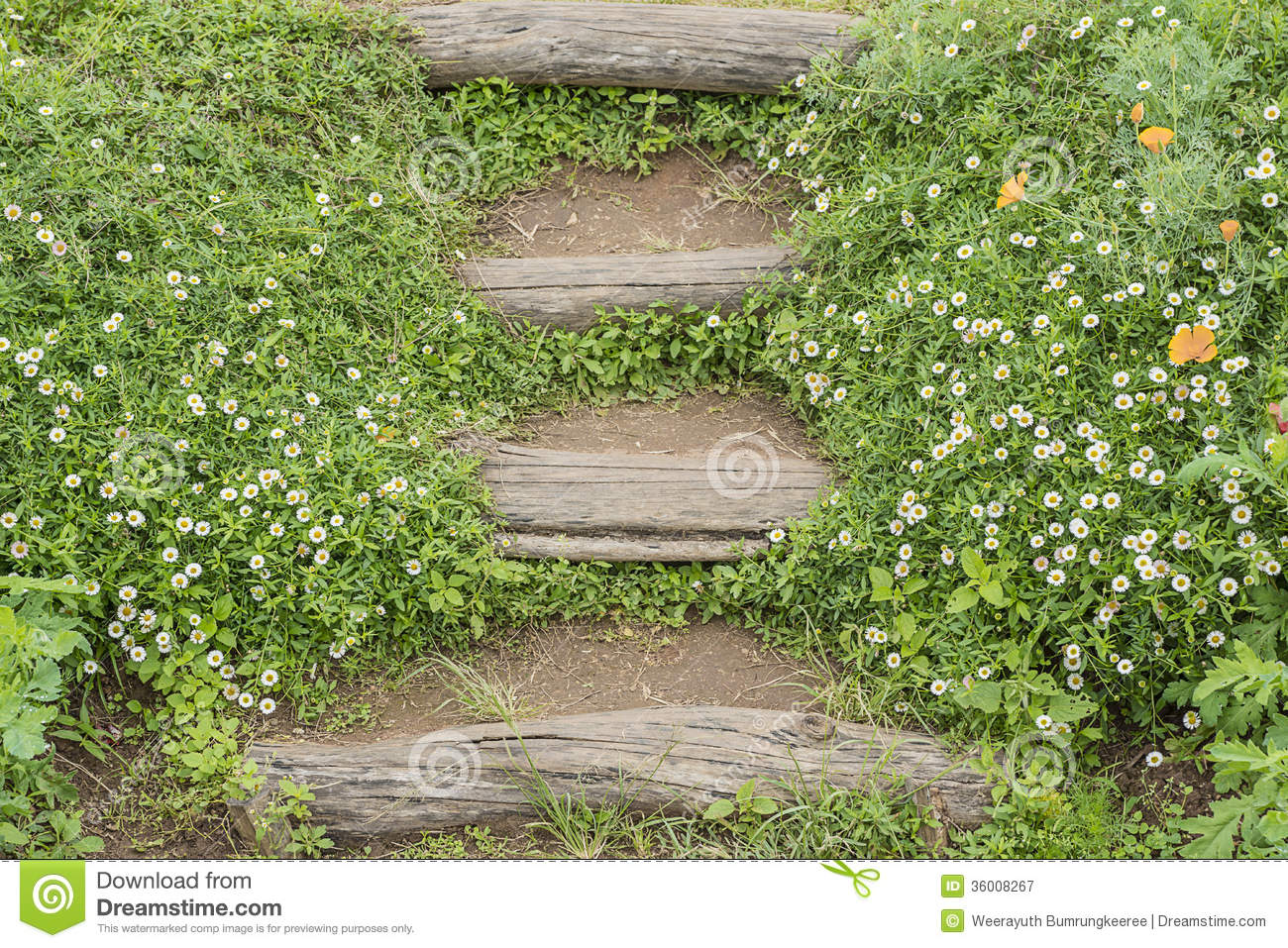 Garden Stairs Royalty Free Stock Photography Image 36008267