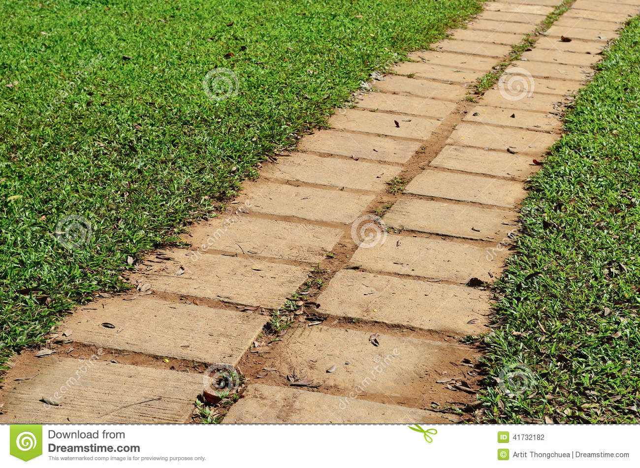 Garden stone path with grass stock photo image of for Stone path in grass