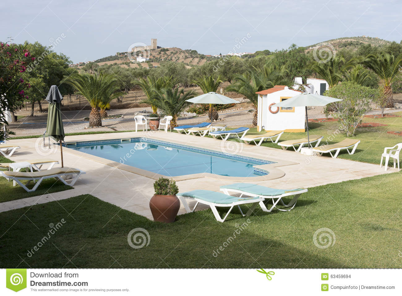 Garden With Swimming Pool Stock Photo Image 63459694