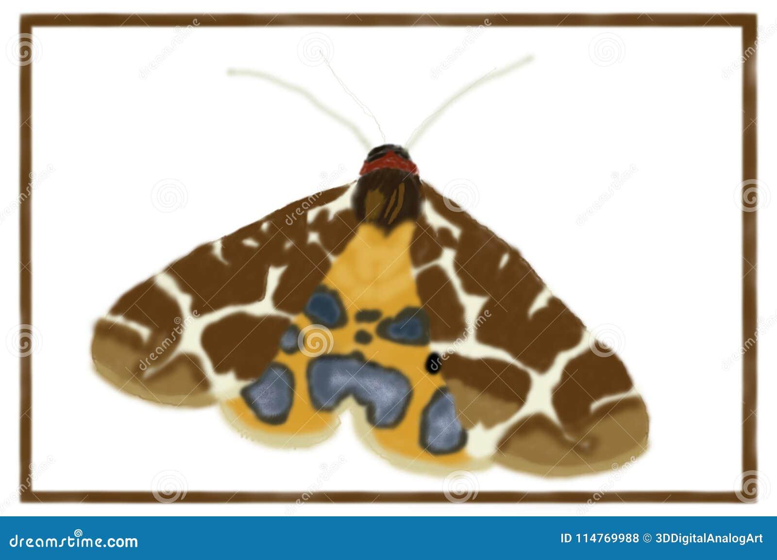 Garden Tiger Moth Arctia Caja - Digital Art Stock Vector ...