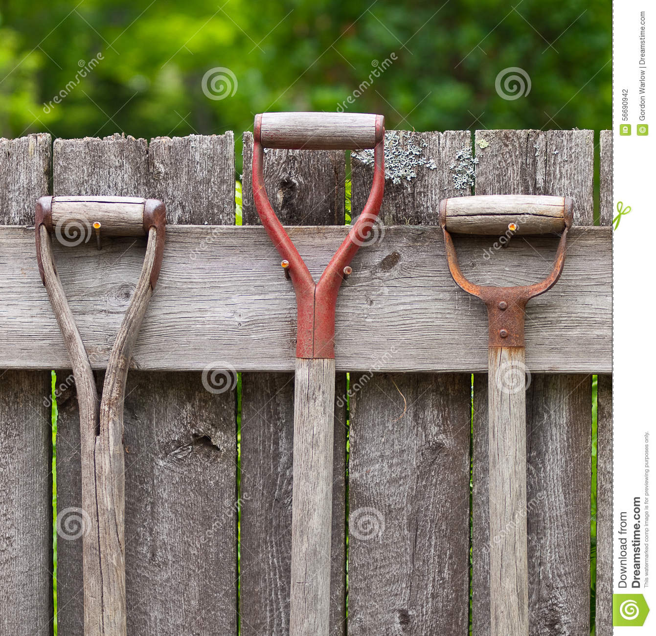 Attractive Royalty Free Stock Photo. Download Garden Tool Handles ...