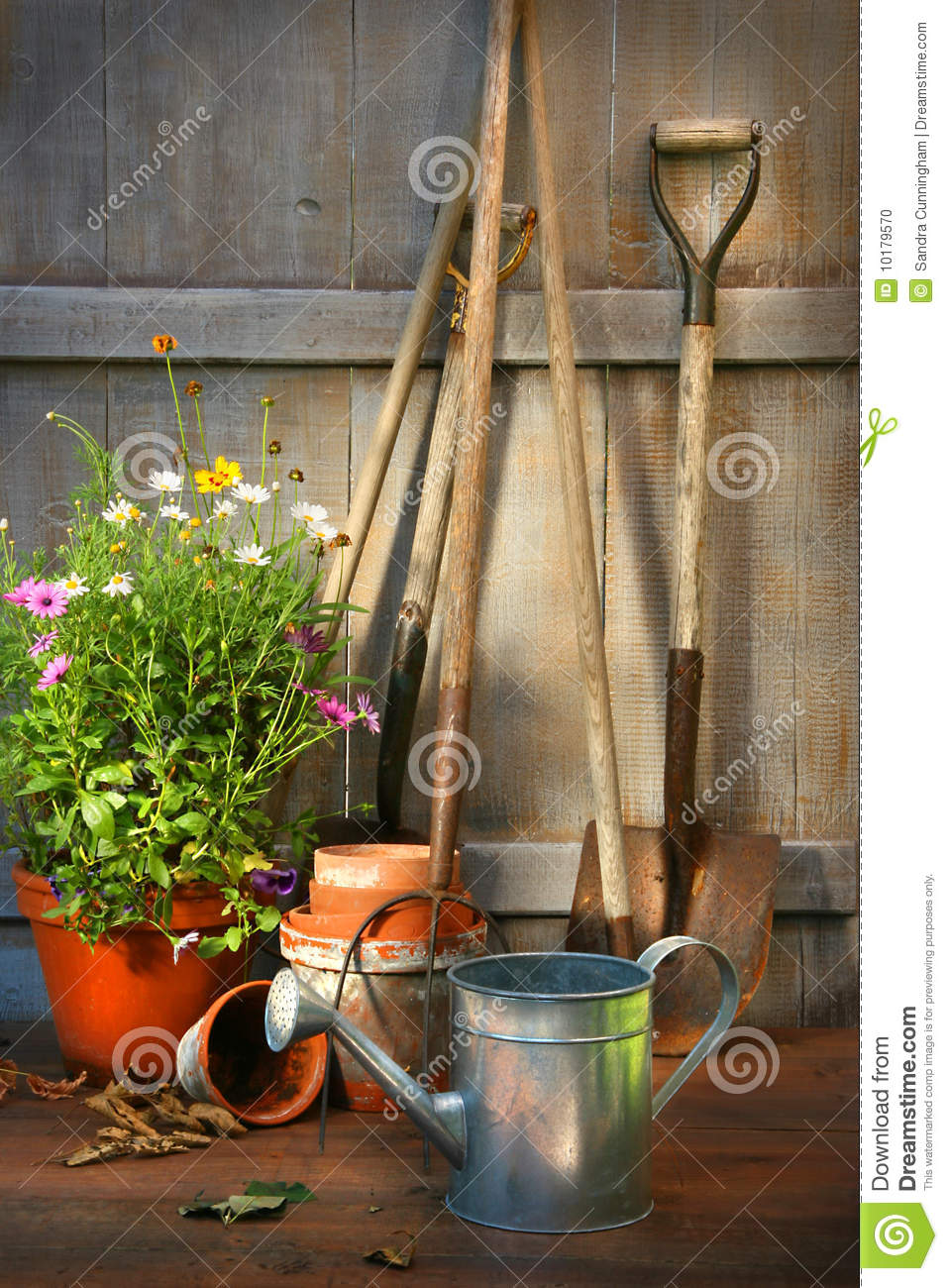 Garden Tools And A Pot Of Summer Flowers In Shed Stock