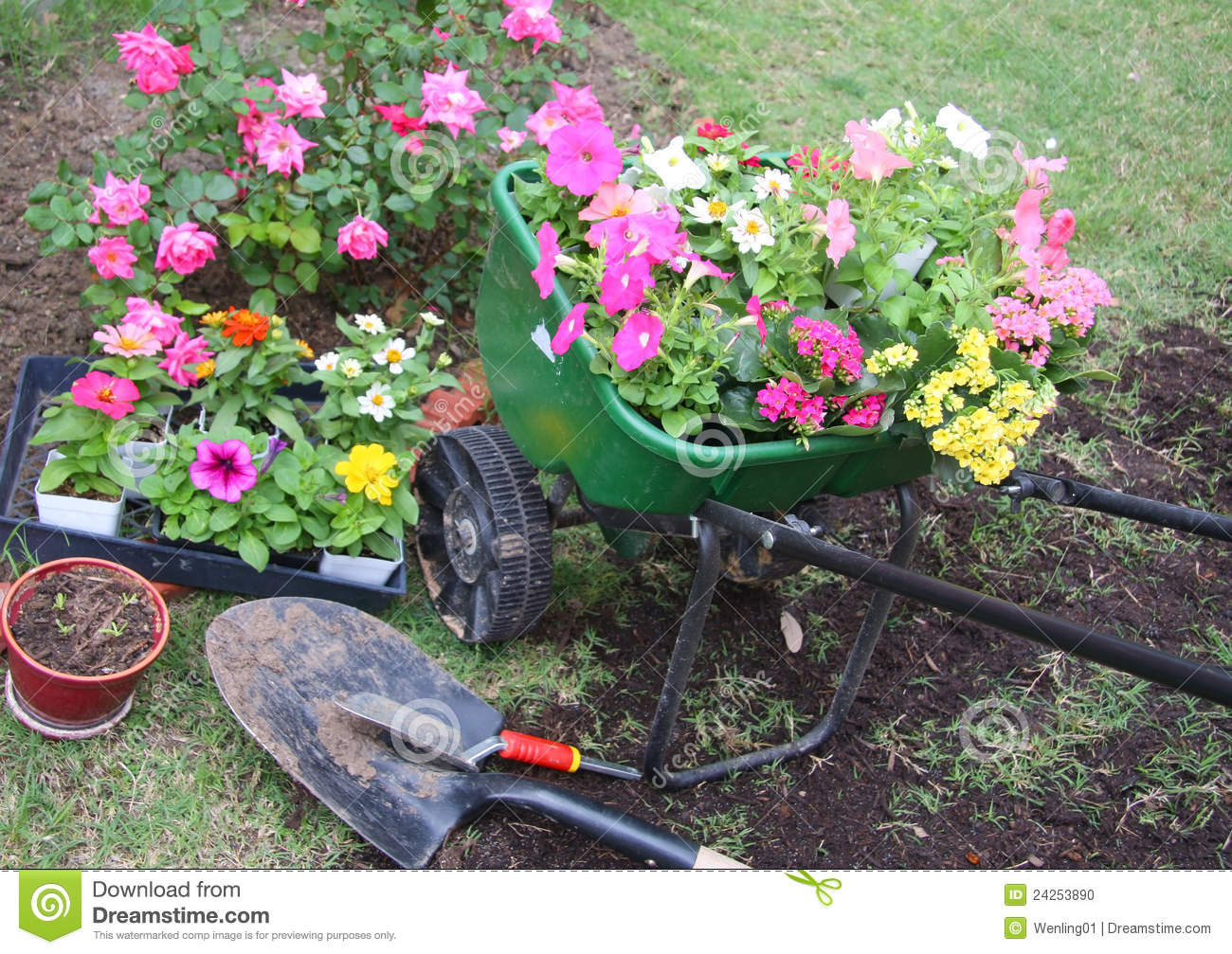 Garden Tools And Spring Flowers Stock Photo Image 24253890
