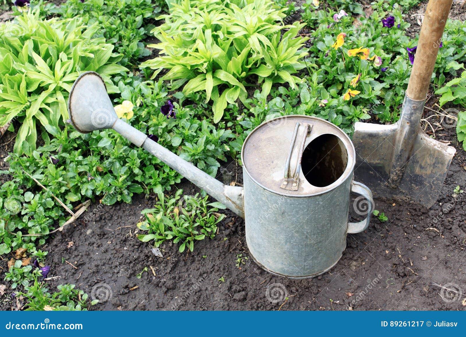 Garden Tools In Vegetable Garden On Background Of Plants Stock