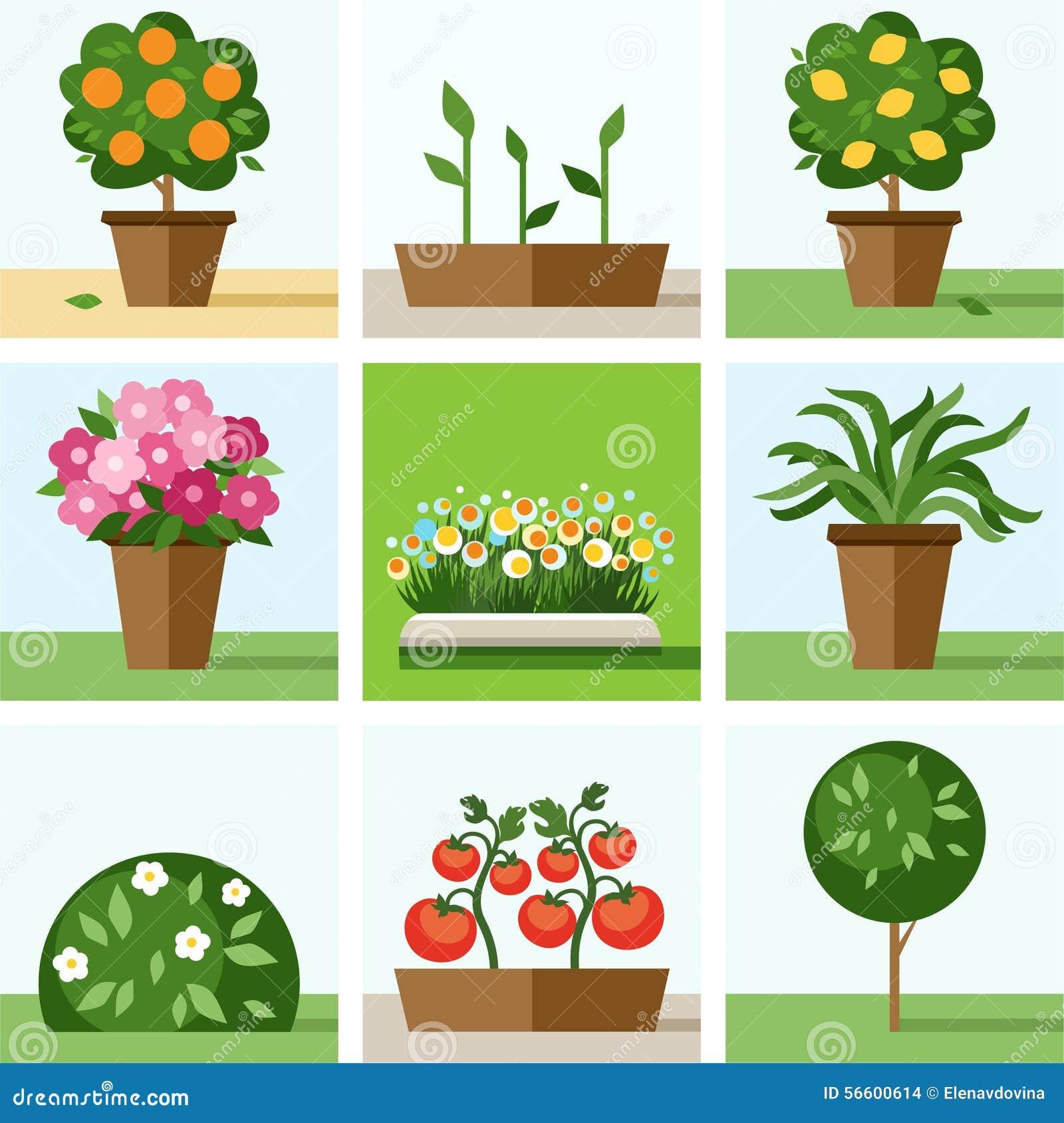 Download Garden, Vegetable Garden, Flowers, Trees, Shrubs, Flower Beds,  Icons