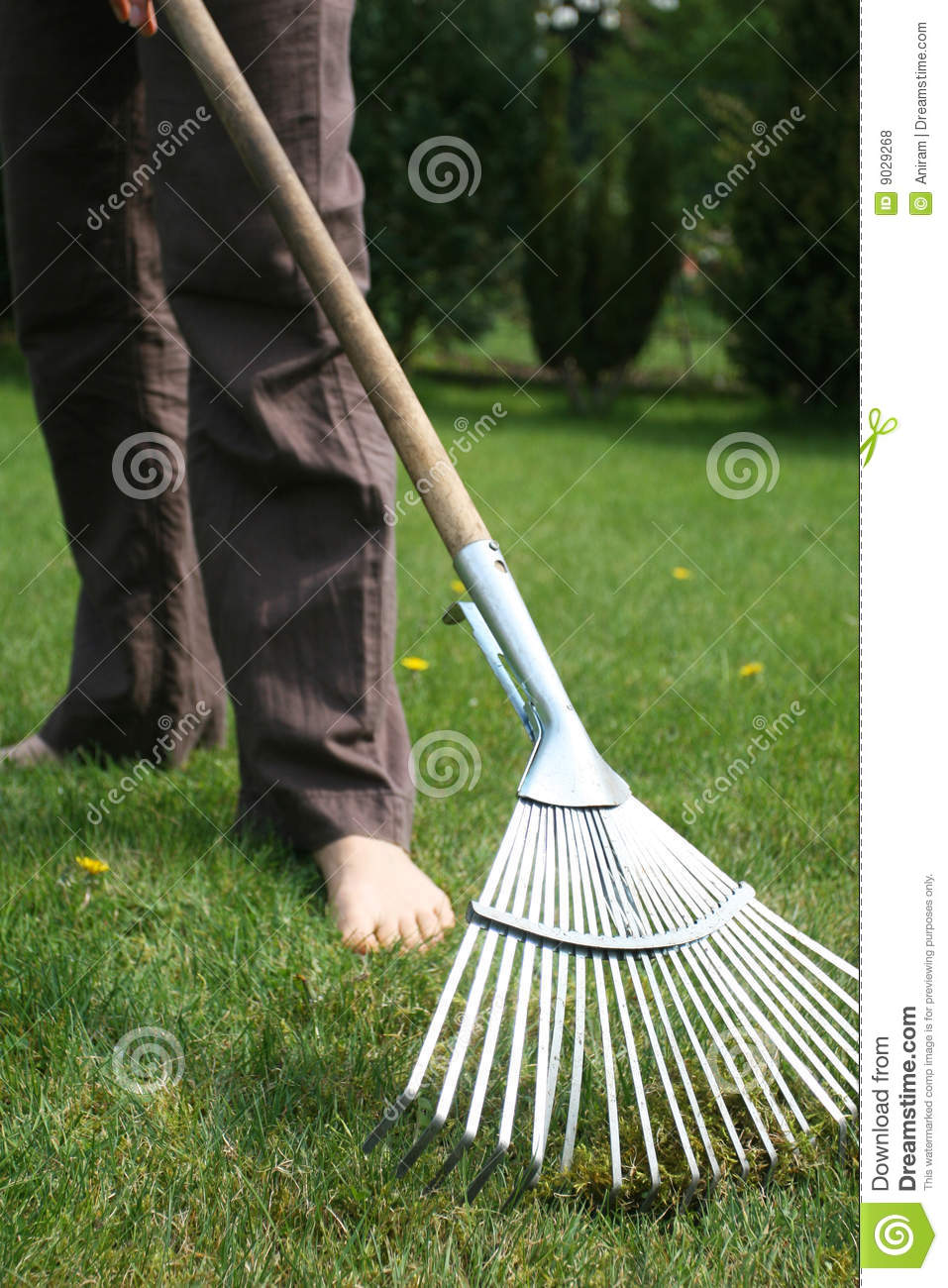Garden Work Royalty Free Stock Photos Image 9029268