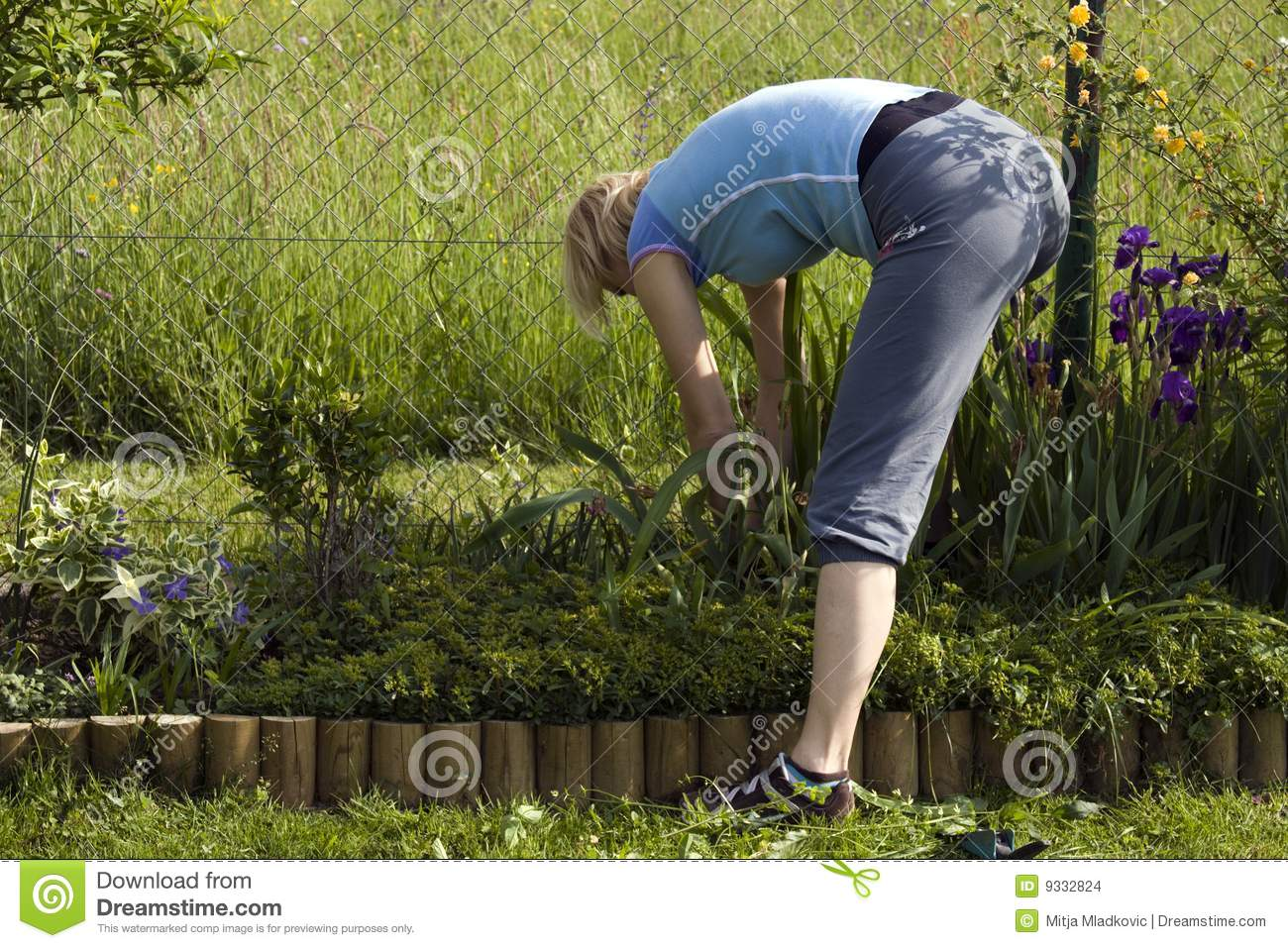 Garden Work Stock Images Image 9332824