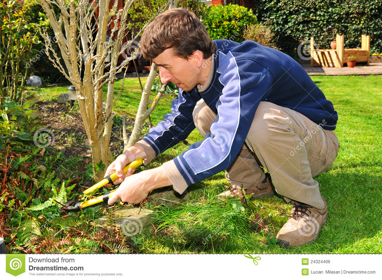 gardener stock photo image of green manual worker