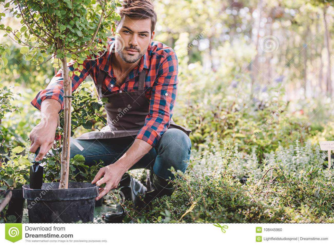 Gardener in apron planting tree while working in garden