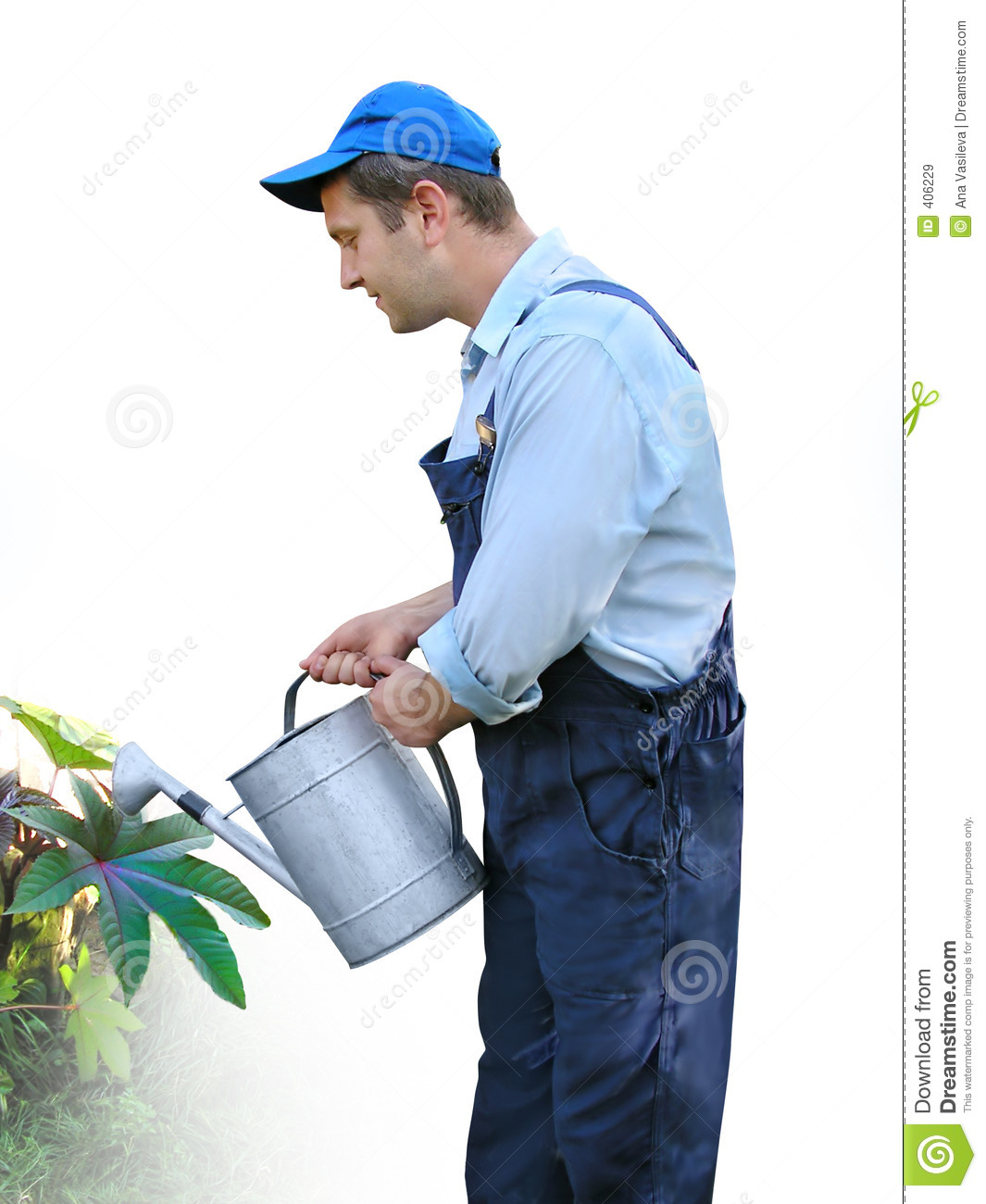 Gardener Worker In Working Clothes Watering Plants With